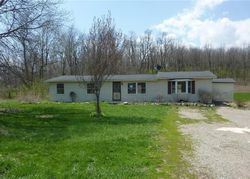 Township Road 166 - West Liberty, OH Home for Sale - #28780439