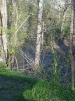 Sharps Creek Rd