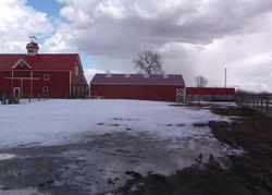 Red Barn Rd