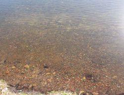 W Big Portage Lake R