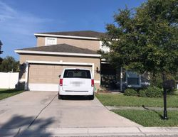Angelonia Ter - Foreclosure In Land O Lakes, FL