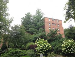 Pearsall Dr Apt 3a