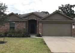 Louetta Reach Dr - Foreclosure In Spring, TX