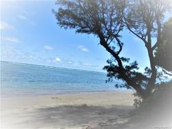 Kamehameha Hwy Apt 3