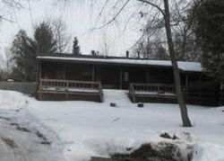 Blueberry Ct - Foreclosure In Saint Helen, MI