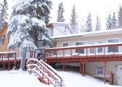 Overlook Dr - Foreclosure In Salcha, AK