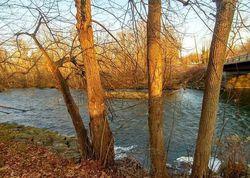 Blue Pond Mnr