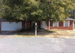 Seattle Slew Ct