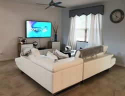 Foxtail Palm Ct